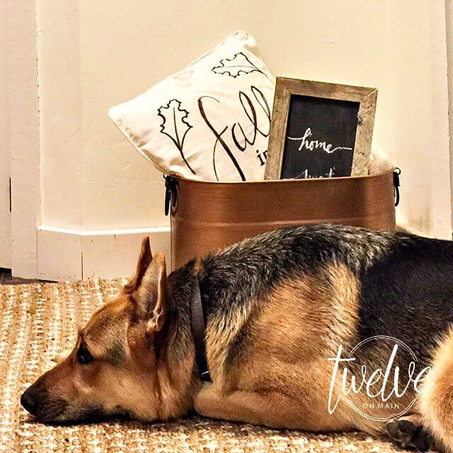 DIY Fall Pillows With Sharpie Paint Pens