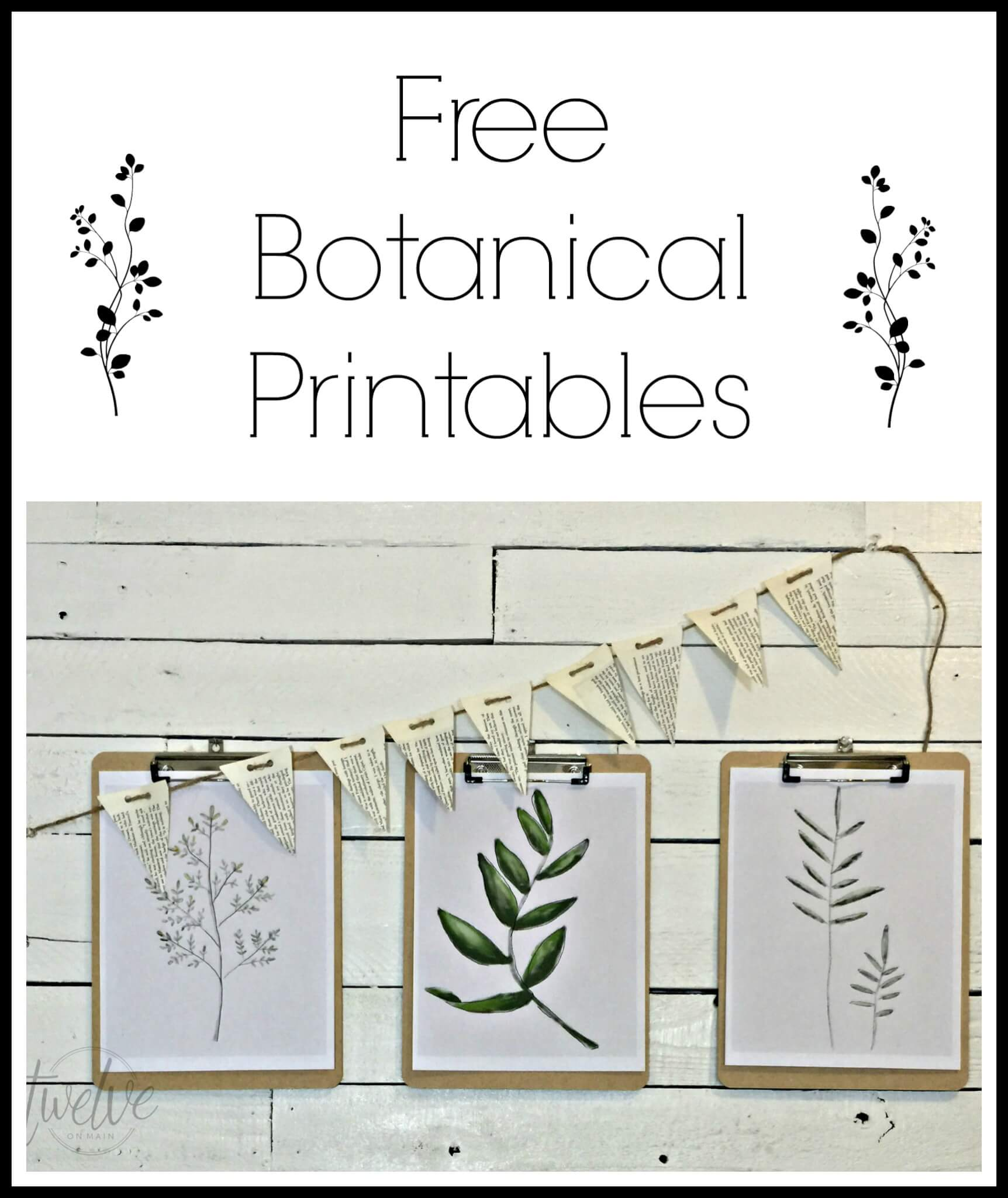 Free Watercolor Botanical Printables | Twelveonmain.com