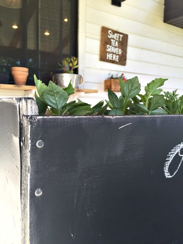 I love to take discarded items and make them my own. This chalkboard planter had a new life! | Twelveonmain.com