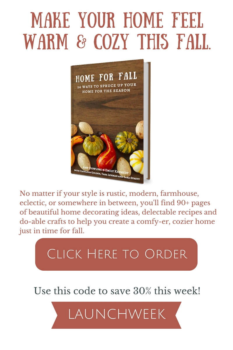 Are you looking for some fall inspiration? This book had 90 plus pages of fall goodness! Must check it out.