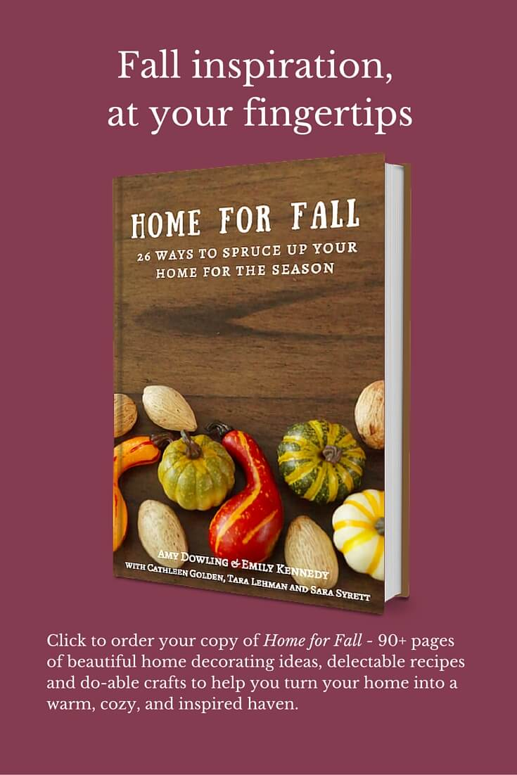 Are you looking for some fall inspiration? This book had 90 plus pages of fall goodness! Must check it out Home For Fall.
