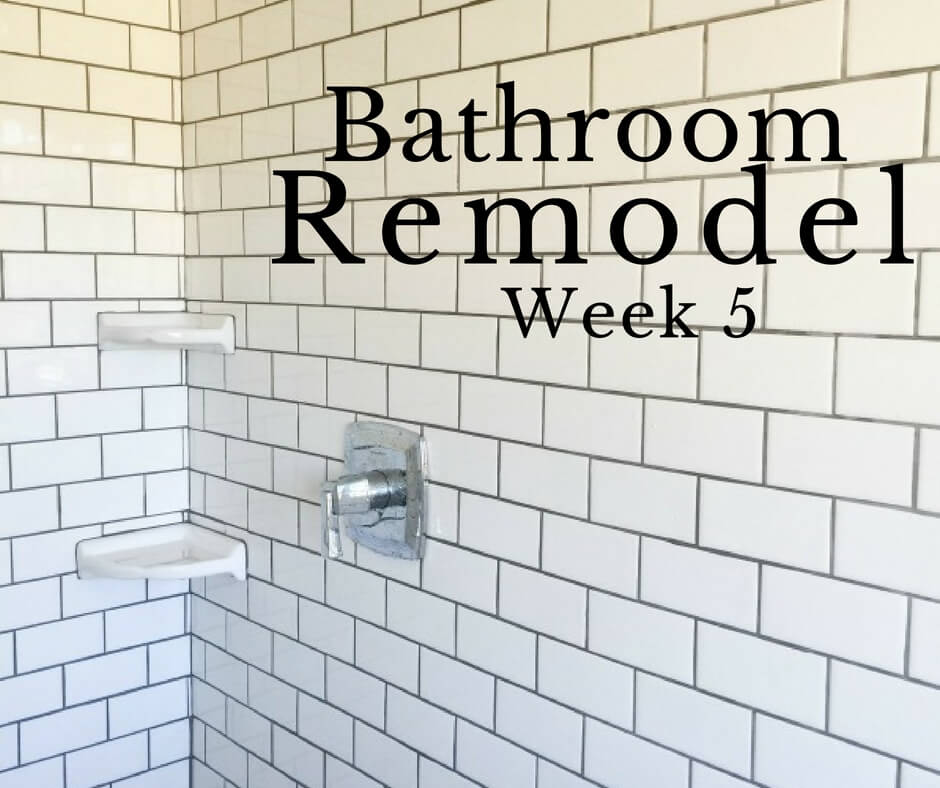 Master Bathroom Remodel Week 5 | The Final Push