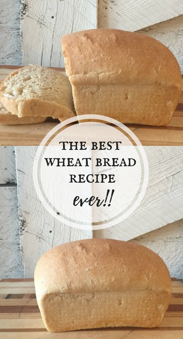 This is the best wheat bread recipe ever! Dont be afraid to try. This recipe is so easy!