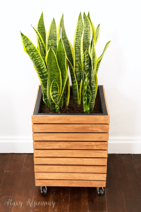 What a cool wood planter!