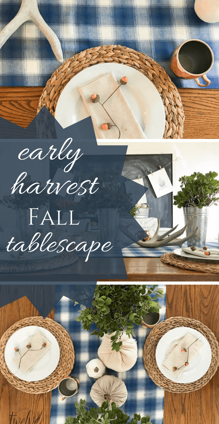 This early harvest tablescape is the perfect transition from summer to fall! Galvanized metal, plaid fabric, and fresh produce! Pus FREE printables!