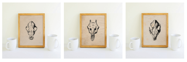 Set of 3 animal skull printables for FREE! Use them in your Halloween decor