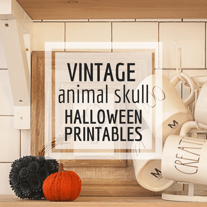 FREE Vintage Animal Skull Halloween Printables