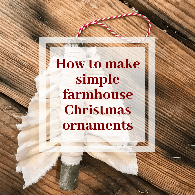 Make Stylish Farmhouse Christmas Ornaments with Only 2 Items!