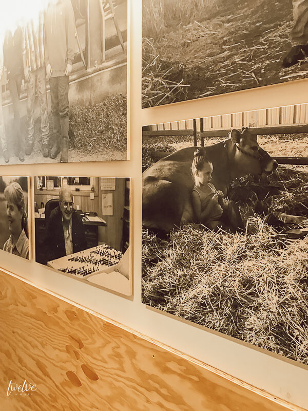 Vintage images at the Tillamook Cheese Factory