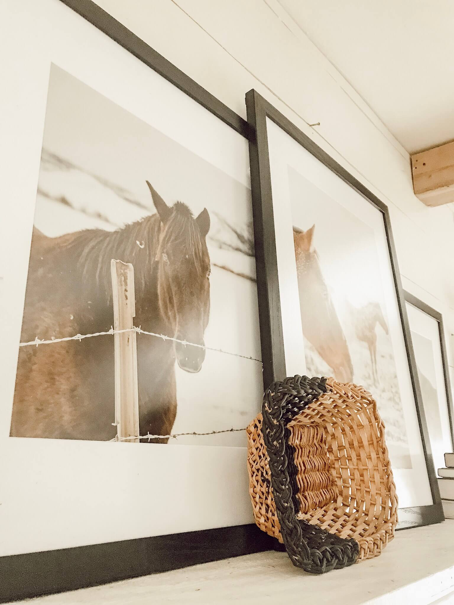 Gorgeous horse photography professionally framed by Frame It Easy