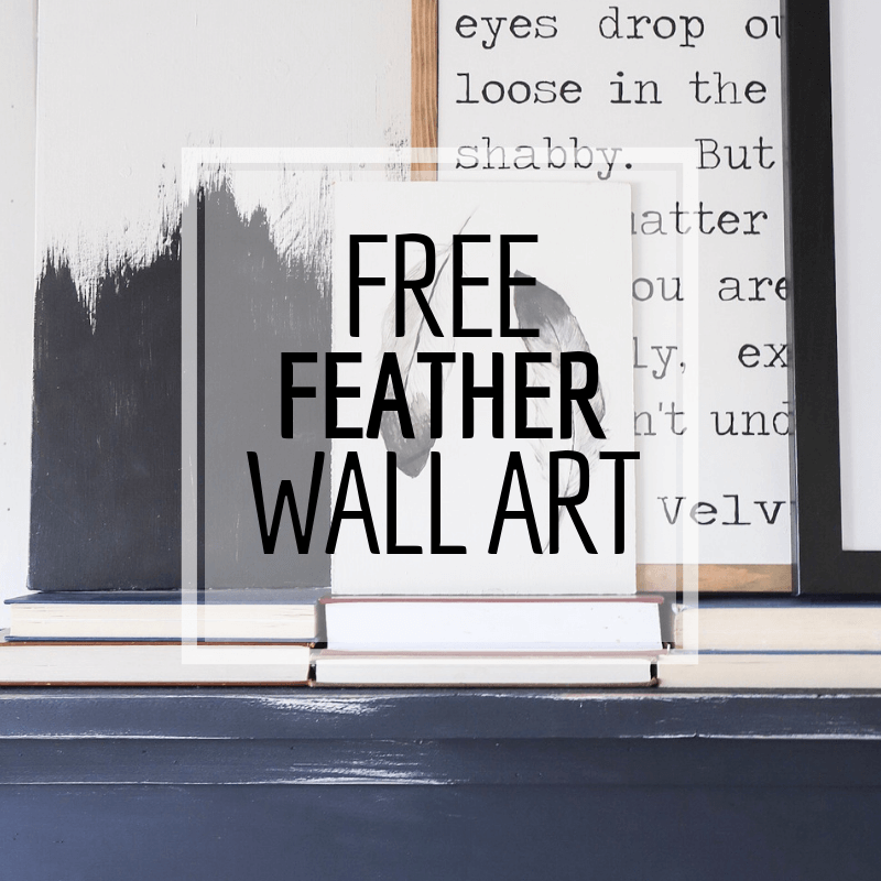 Hand Painted FREE Feather Wall Art Printable