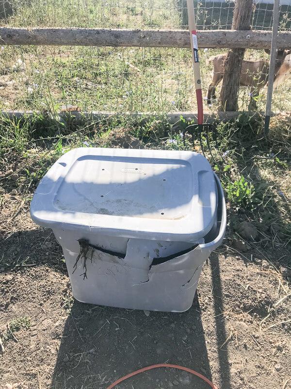 Old janky plastic tub compost bin