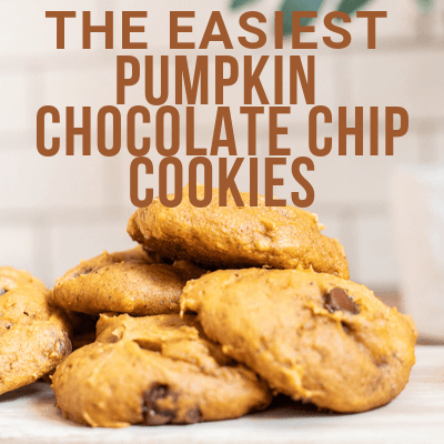 The Easiest and Tastiest Pumpkin Chocolate Chip Cookie Recipe!