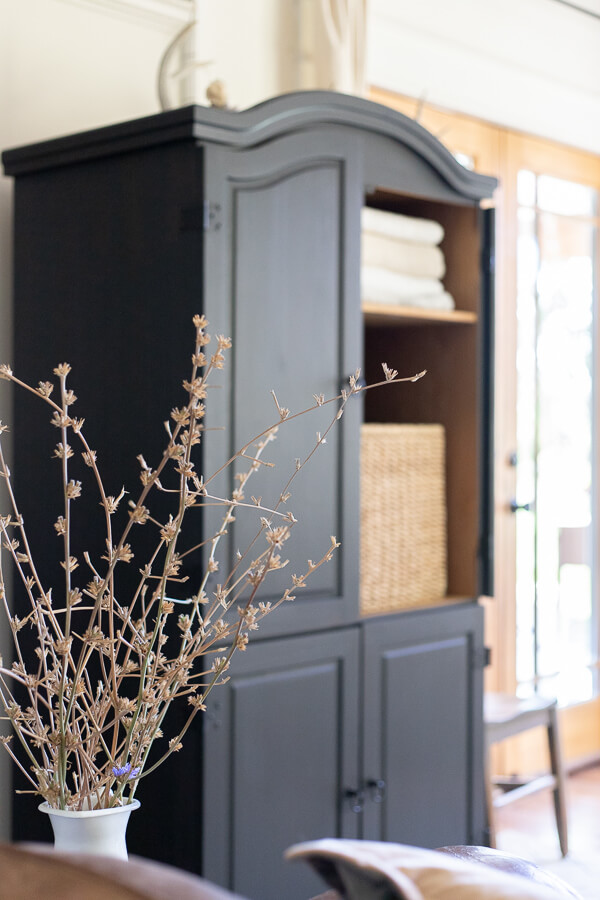 Black armoire in the living room. Stylish and functional, creating storage that is sorely needed.