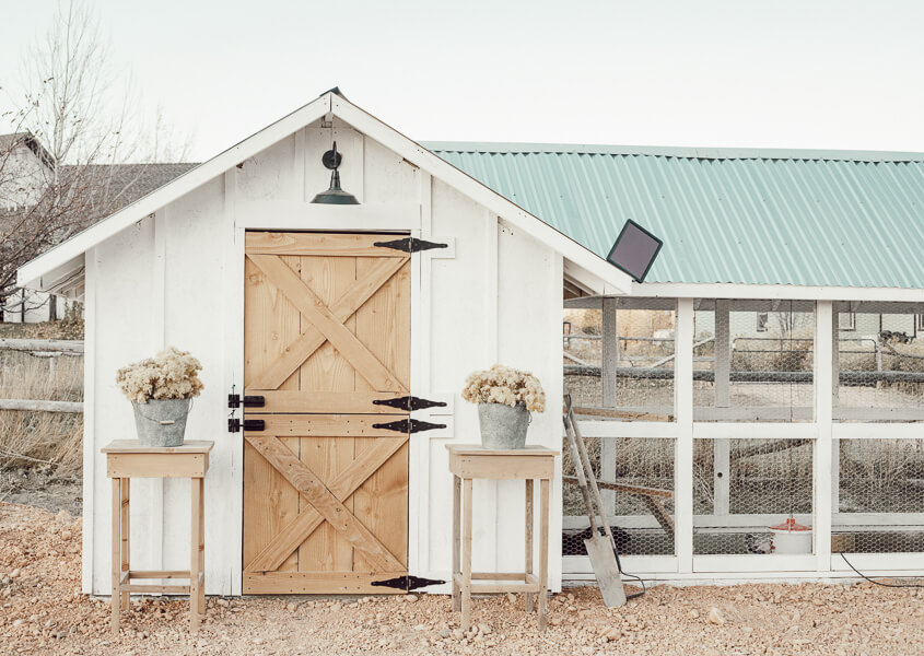 Gorgeous chicken coop ideas that anyone can create!