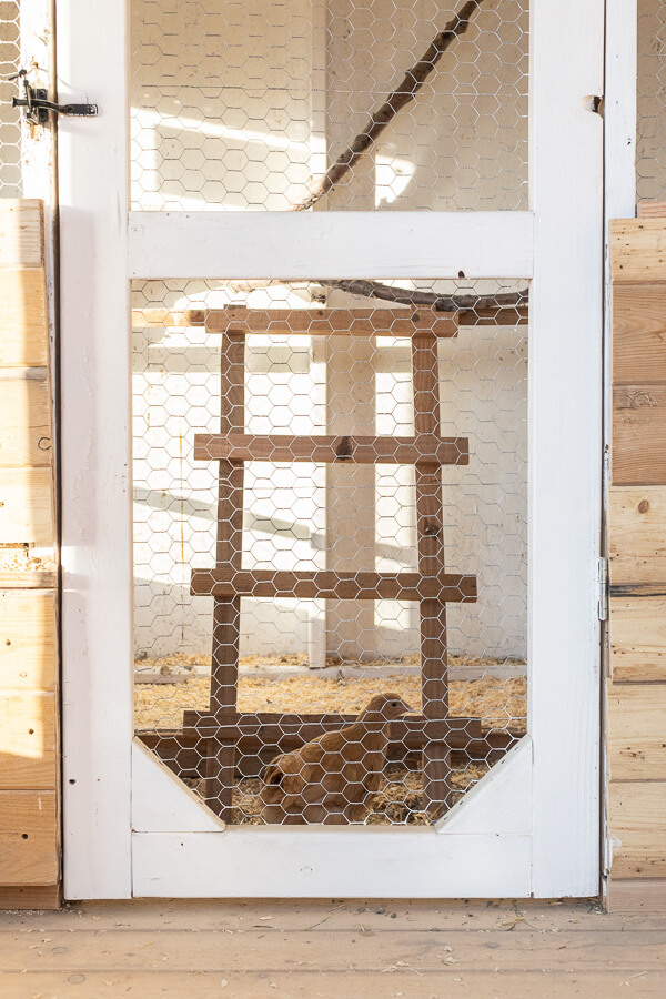 Chicken coop roosting bars, nesting box ideas and more