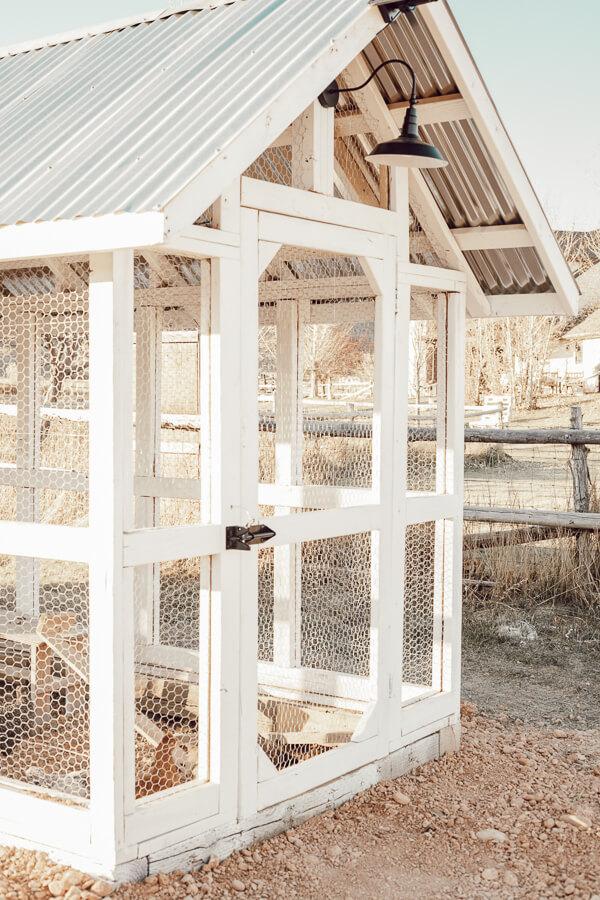 My Functional And Eye Catching Chicken Coop Design Twelve On Main