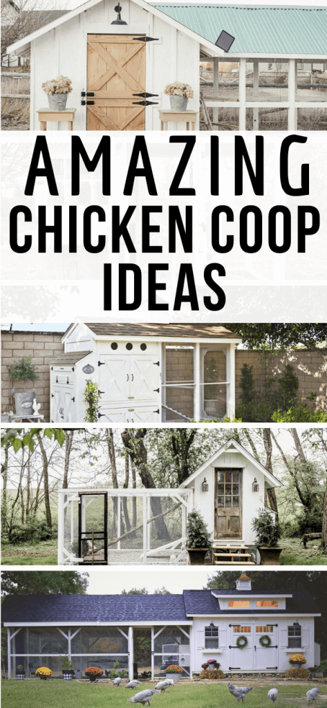 Do you want backyard chickens and farm fresh eggs of your own? Check out these amazing chicken coop ideas and create something functional and stylish too! These are some gorgeous and affordable chicken coops!