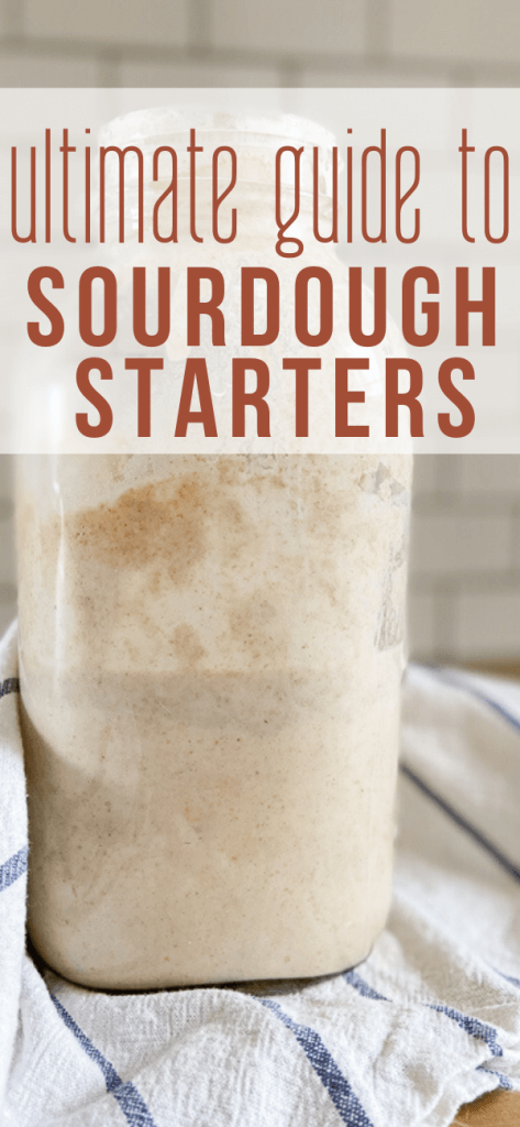 Everything you need to to know about sourdough and sourdough starter. Super helpful resources, step by step instructions for the day to day maintenance, troubleshooting tips(why does my sourdough starter smell nasty?) , and links to tons of great recipes and more!