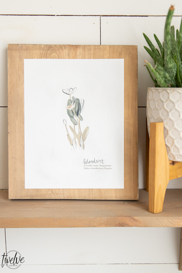 These adorable botanical illustration printables can be yours for FREE! Click here to get access to my printable library and get these in minutes!!