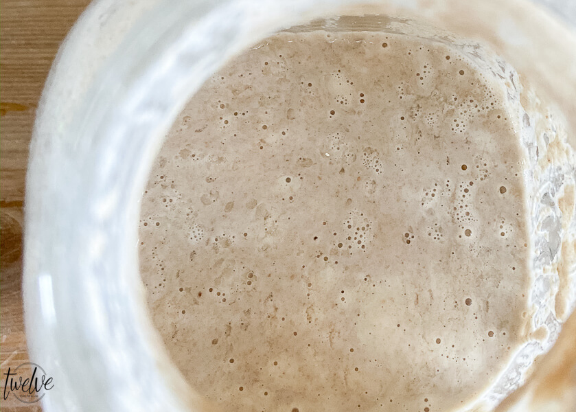 Sourdough starter bubbling up after a couple days on the counter.