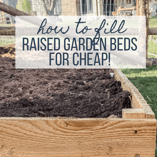 How to fill raised garden beds and save the amount of soil you will use!