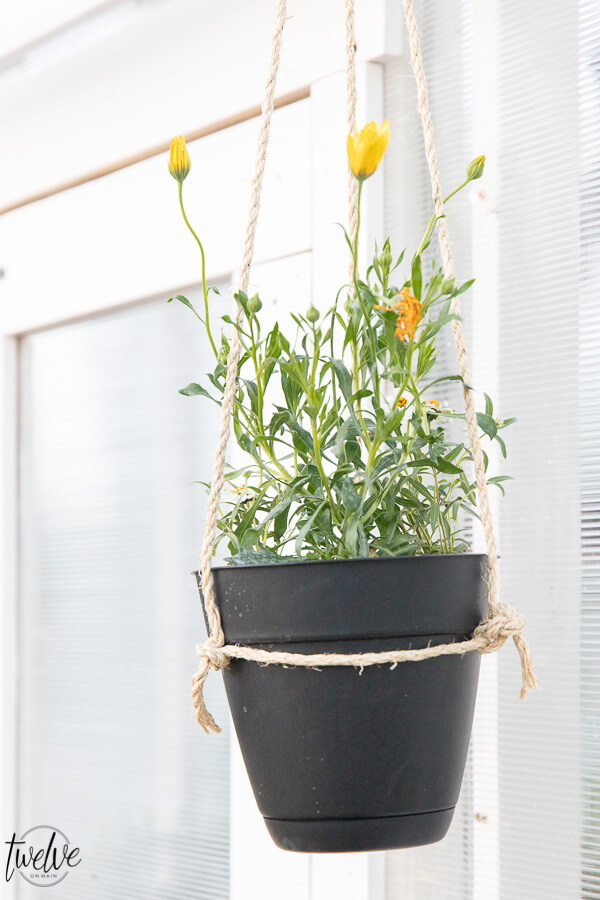 How to make the easiest DIY hanging planter that is perfectly rustic and simple!