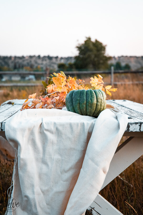 Outdoor fall dining ideas