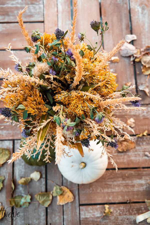 How to create a simple fall floral arrangement with items from your own backyard! Its amazing what you can create for free!