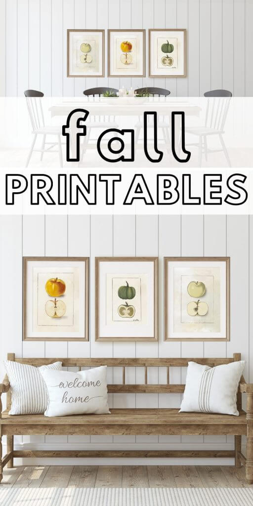 Get these great hand drawn fall printables for free!  There are two apple illustrations, as well as one pumpkin illustration. These are similar to botanical illustrations with a fall flare and hand drawn style.