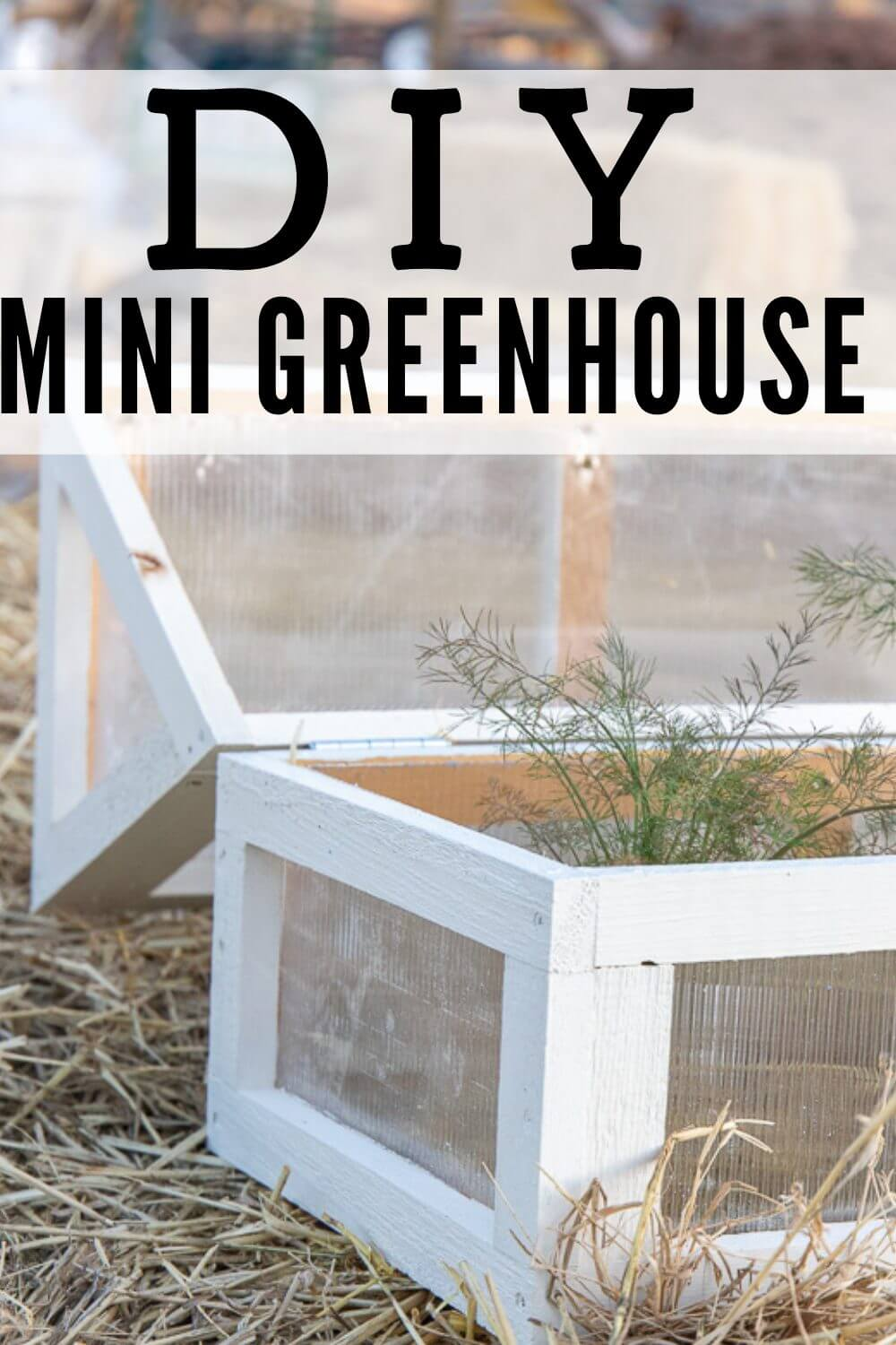 How to make a super cute DIY mini greenhouse to use in your garden, planter boxes and even on your patio to protect those fragile plants from frost and unpredictable weather.