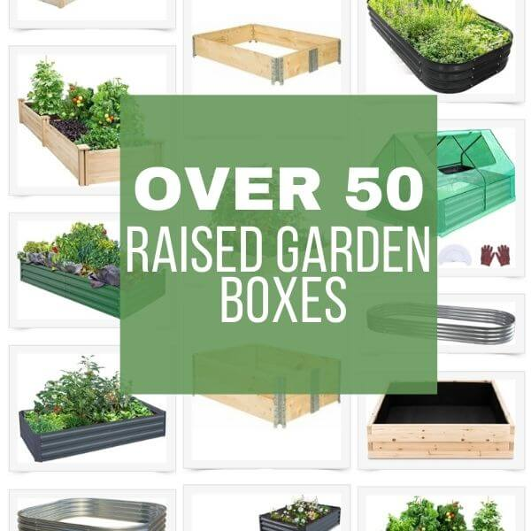 Over 50 Raised Garden Boxes Perfect For Your Garden Needs