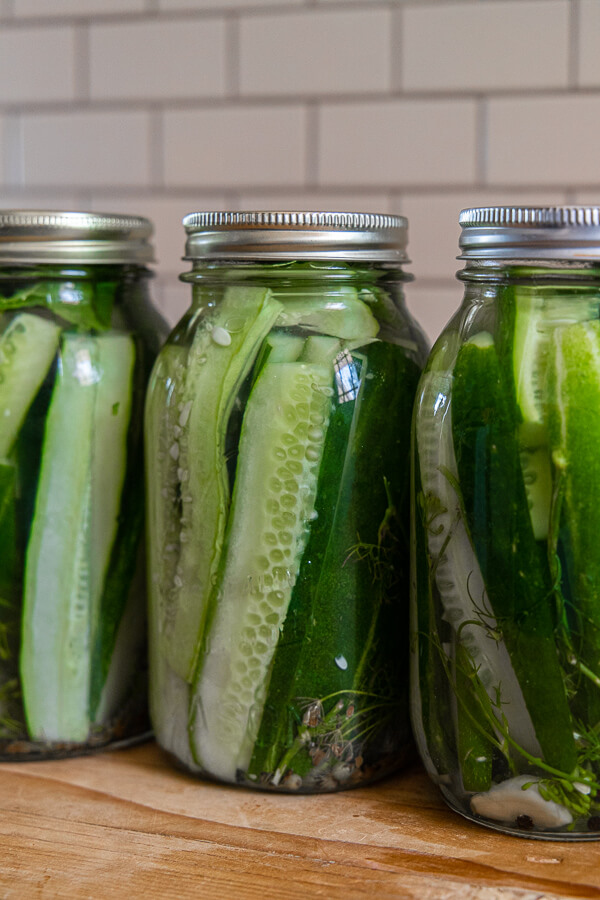 Make these easy refrigerator dill pickles any time of year! They are super easy to make and taste amazing!  We love them any time of year.